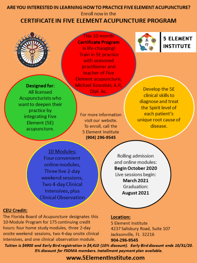 5 Element Institute Training Program Flyer